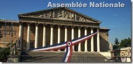 assemblee_nationale258_thumb.jpg